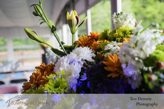 2015-05-30 18u56m10s - IMG_8727
