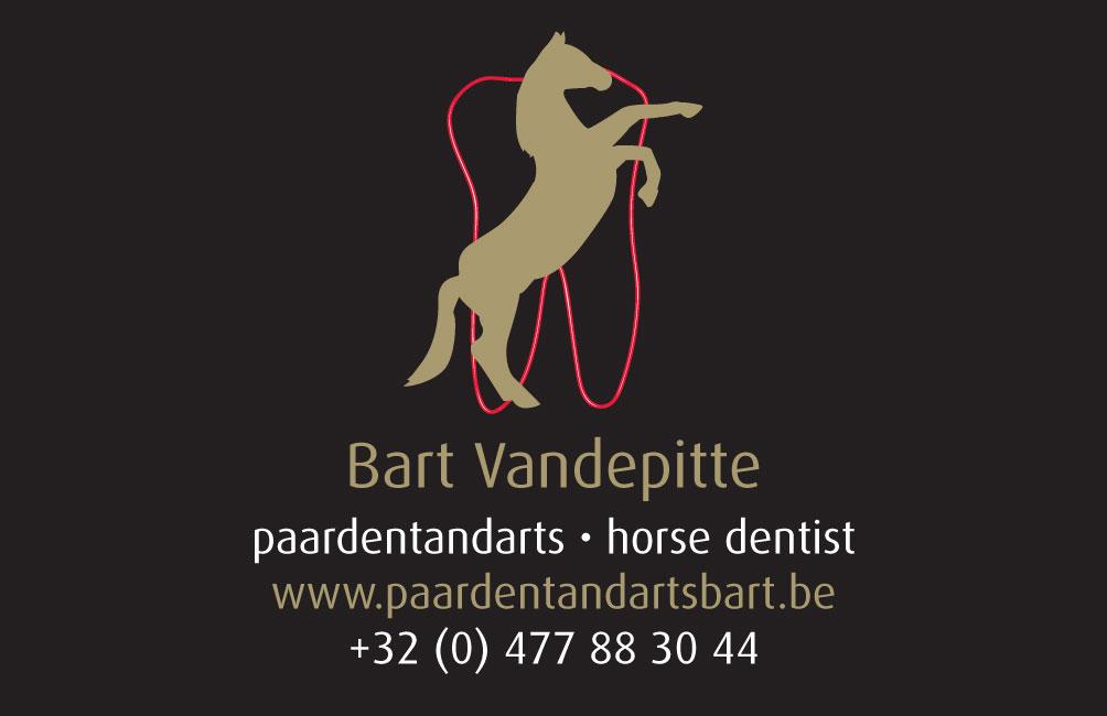 Paardentandarts Bart